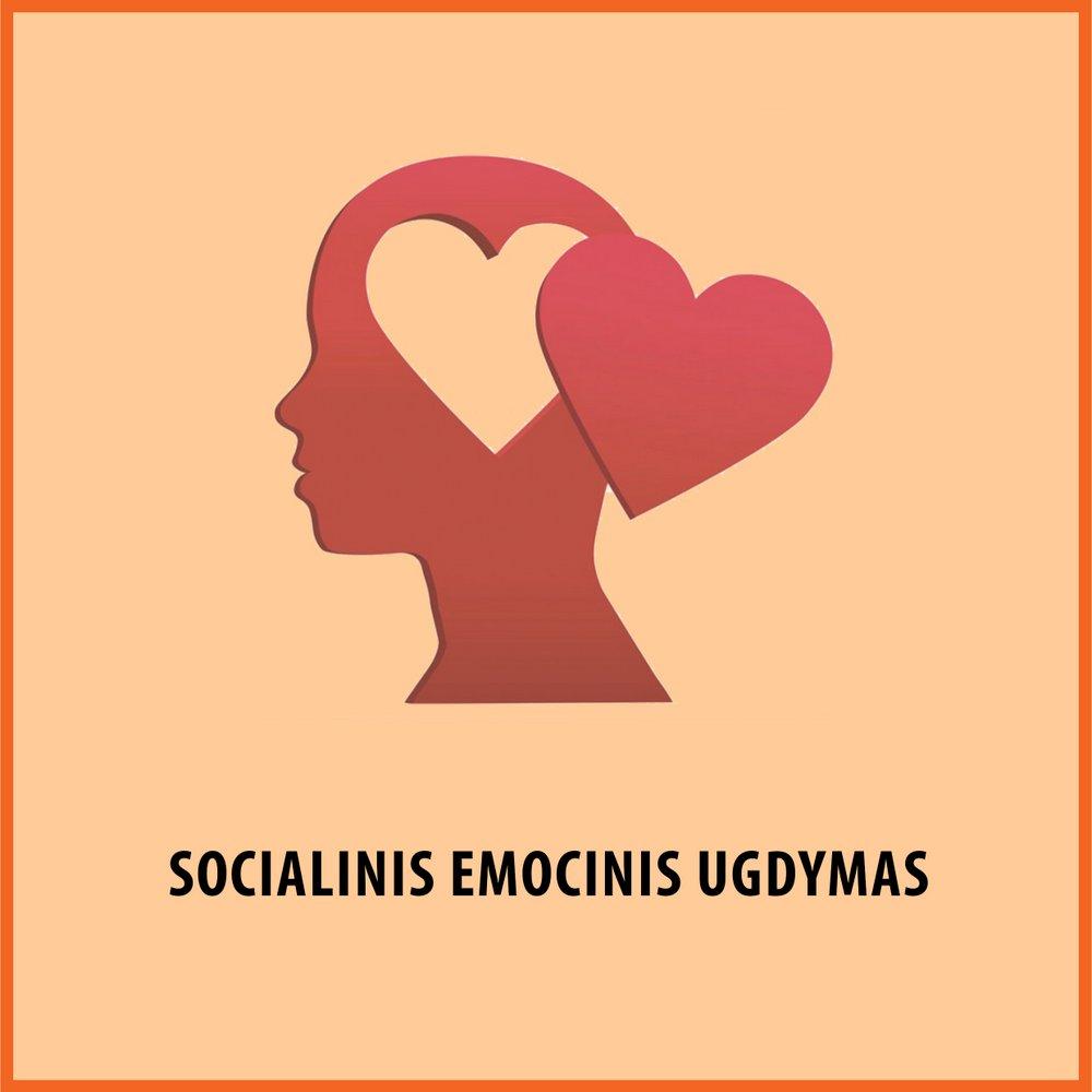 Socialinis-emocinis ugdymas